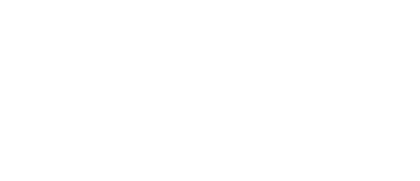 BLG Business Advisors